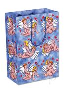 Angel Sex Positions Gift Bag